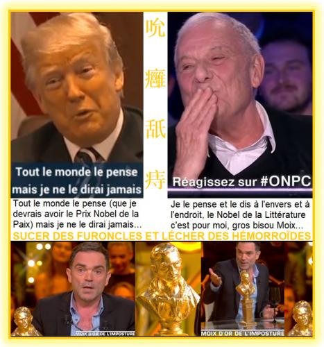 Yann Moix suce les furoncles et lèche les hémorroïdes de Philippe Sollers dans ONPC du 14 avril 2018 en lui donnant le Nobel de littérature.png