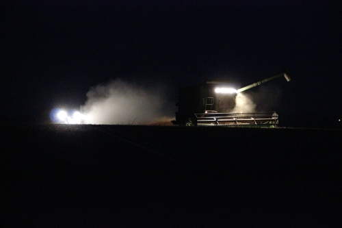 travaux-agricoles-nocturnes_19688698654_o.jpg