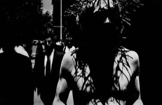 Trent Park, Untitled, 2001-2.jpg